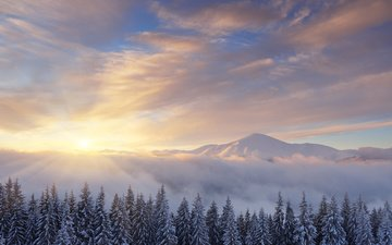the sky, clouds, trees, mountains, sunrise, snow, winter, pine, oleksandr kotenko