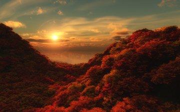 небо, облака, деревья, восход, солнце, лес, утро, листва, лес.листва