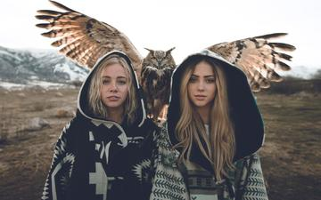 owl, look, wings, girls, bird, hair, face, blonde, zach allia