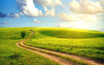 the sky, road, grass, clouds, the sun, landscape, field, summer