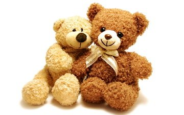 toy, pair, white background, teddy, teddy bear