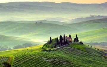 холмы, пейзаж, сад, дом, италия, виноградник, тоскана