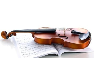 notes, violin, music, strings, white background, musical instrument