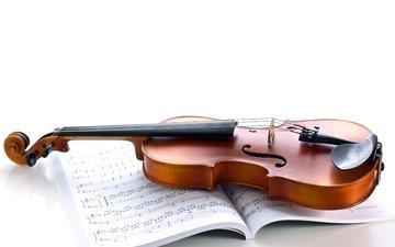 ноты, скрипка, музыка, струны, белый фон, музыкальный инструмент