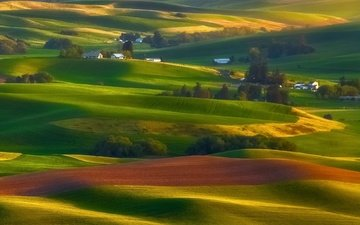 trees, hills, nature, landscape, field, houses