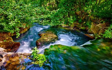 water, river, nature, stones, leaves, branches, waterfall, stream