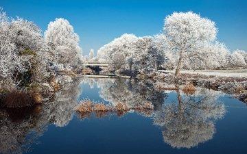 деревья, озеро, природа, зима, отражение, пейзаж, парк, иней, пруд