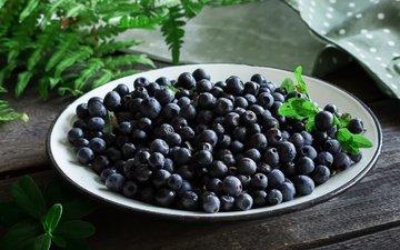 berries, blueberries, fern, plate