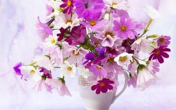 цветы, лепестки, букет, ваза, космея, петунья