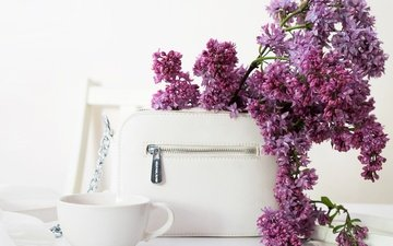 flowers, branches, cup, lilac, bag