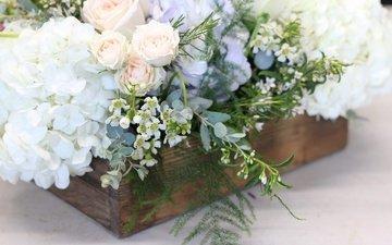 цветы, розы, букет, композиция, флоксы