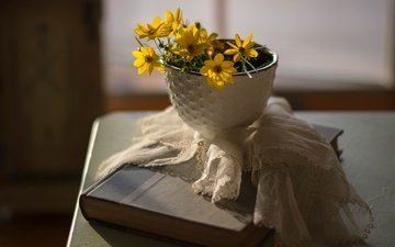 flowers, background, petals, napkin, book