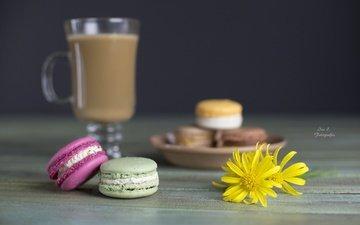 цветы, кофе, сладкое, печенье, выпечка, десерт, макаруны