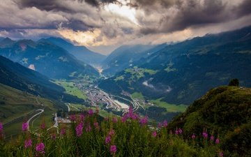 flowers, clouds, mountains, hills, nature, landscape