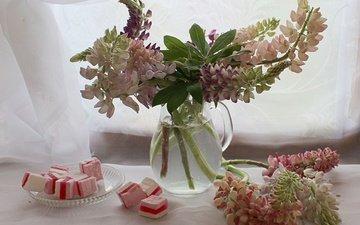 flowers, plants, summer, candy, sweet, dessert, marmalade, still life, lupins