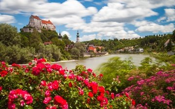 flowers, river, the bushes, castle, roses, germany, bayern, bavaria, burghausen, salzach river, burghausen castle, the salzach river