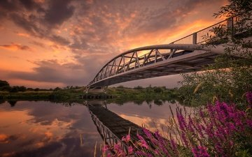the sky, flowers, clouds, river, reflection, bridge