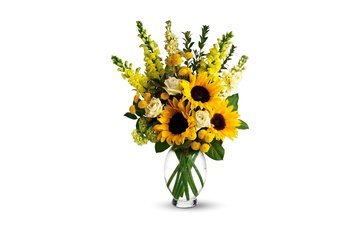 flowers, roses, bouquet, sunflowers, white background, vase, yellow, snapdragons