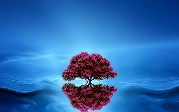 tree, reflection, background, wave