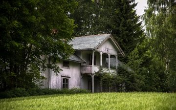 grass, trees, tree, field, house