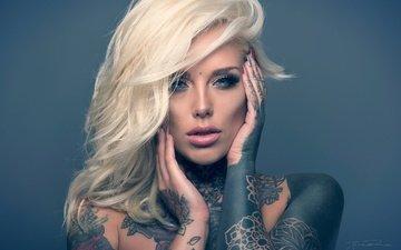 фон, блондинка, взгляд, модель, тату, волосы, лицо, руки, джек рассел, lauren brock