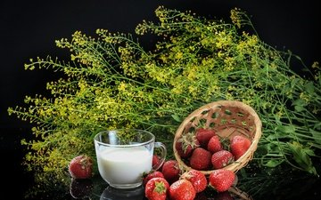 background, strawberry, black background, berries, cup, milk, wildflowers, still life