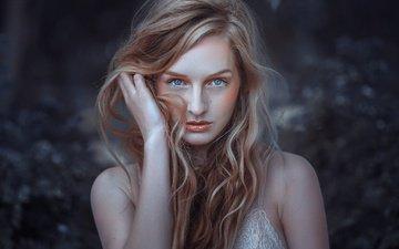 девушка, фон, взгляд, модель, волосы, лицо, эмма