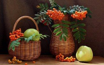 фрукты, яблоки, корзина, ягоды, ваза, натюрморт, рябина