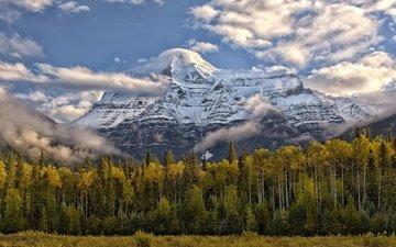 небо, облака, деревья, горы, природа, пейзаж