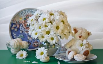 bear, toy, bouquet, dishes, chrysanthemum, marshmallows, still life