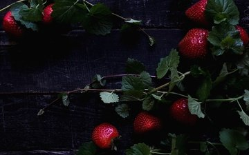 leaves, branches, strawberry, berries, wooden surface