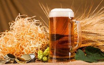 ears, mug, beer, foam, hops, tube