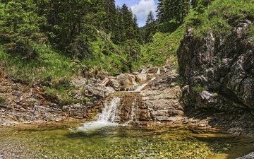лес, водопад, австрия, речка, тироль
