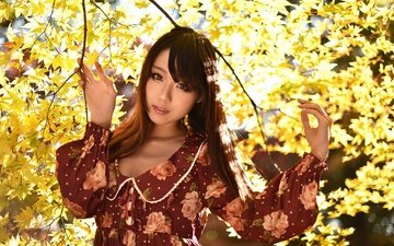 leaves, girl, dress, branches, look, autumn, hair, face, asian