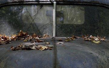 листья, машина, осень, лом, капот