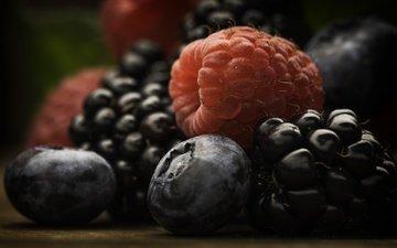 макро, малина, еда, ягоды, черника, ежевика