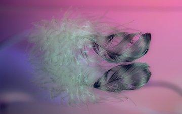 макро, фон, перья, перо, перышки