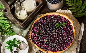 mint, berries, blueberries, cakes, pie