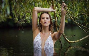 девушка, взгляд, модель, волосы, лицо, позирует, в белье, в воде