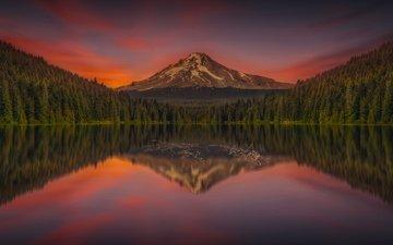 the sky, lake, mountains, sunset, reflection, landscape, pond, forest, oregon, mount hood, trillium lake