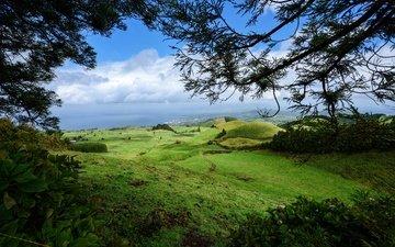 небо, трава, облака, деревья, горы, зелень, листья, море, поля, ветки, кусты, панорама, побережье, португалия, луга