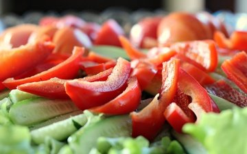 vegetables, pepper, salad, cucumbers