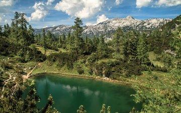 озеро, горы, лес, австрия, альпы, штирия, долина тауплицальм