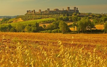 пейзаж, поле, стена, башня, италия, колоски, тоскана, монтериджони