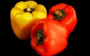 black background, vegetables, pepper, sweet, bulgarian