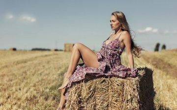 девушка, платье, поле, взгляд, модель, профиль, ножки, волосы, лицо, солома, секси, боке, monica cenedese