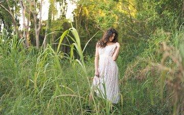 природа, растения, девушка, платье, лето, daniella