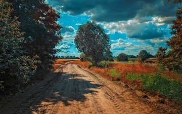 the sky, road, clouds, trees, nature, landscape