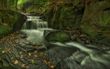 rocks, stones, leaves, stream, waterfall, autumn, moss, cascade