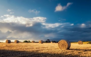 the sky, light, clouds, morning, field, horizon, hay, summer